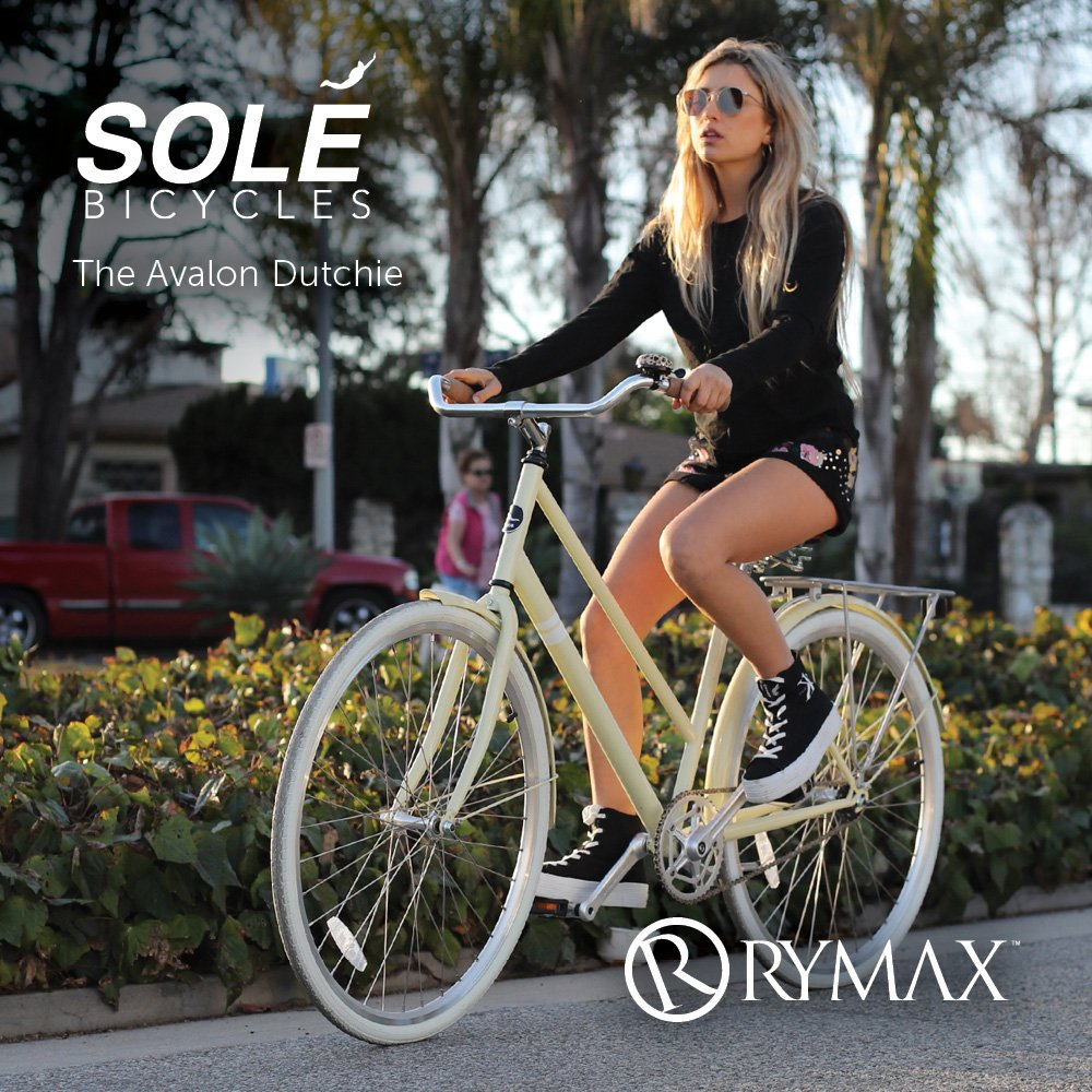 Solé Bicycles: The Avalon Dutchie