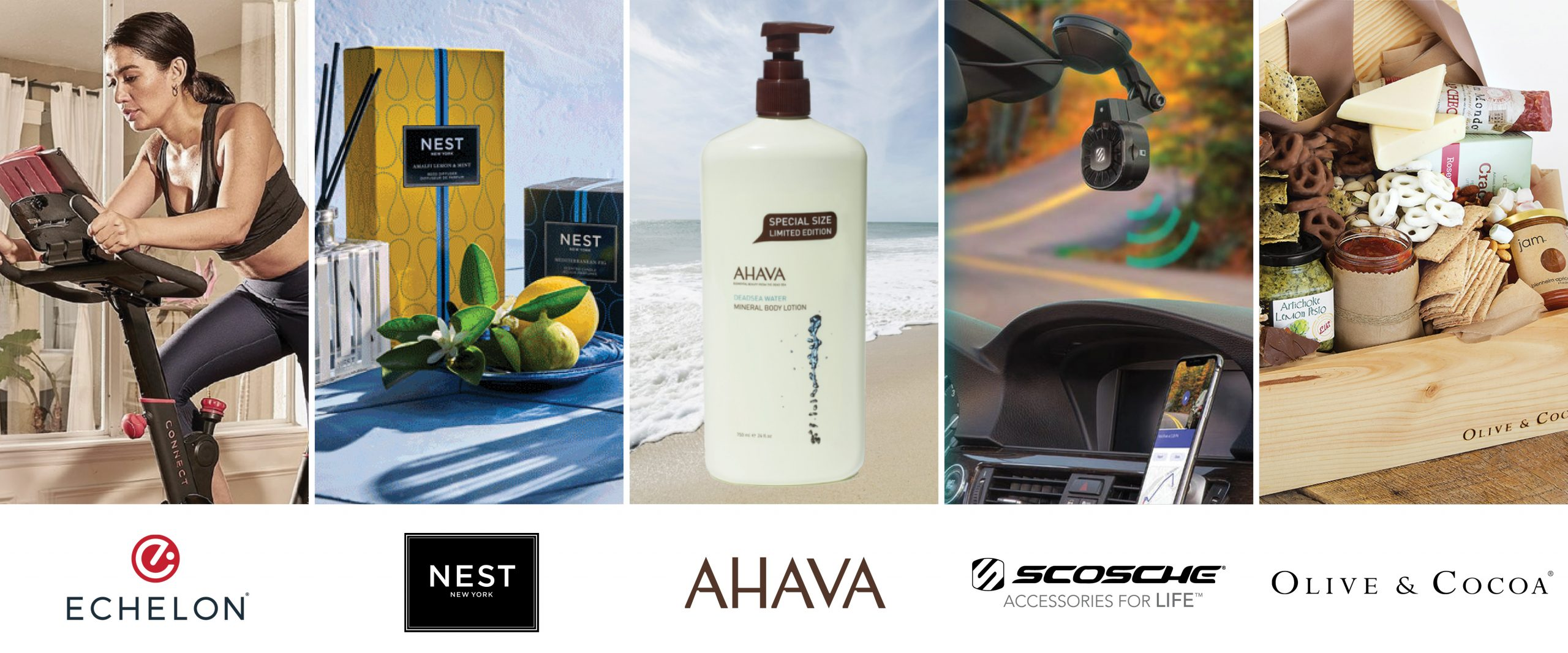 Echelon-Nest-Ahava-Scoche-Olive & Cocoa